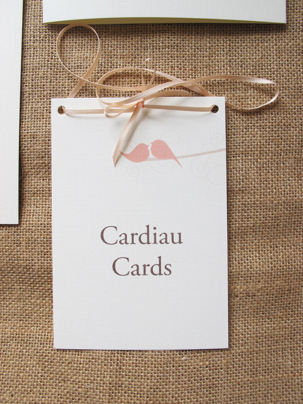 Tweet cards sign in apricot